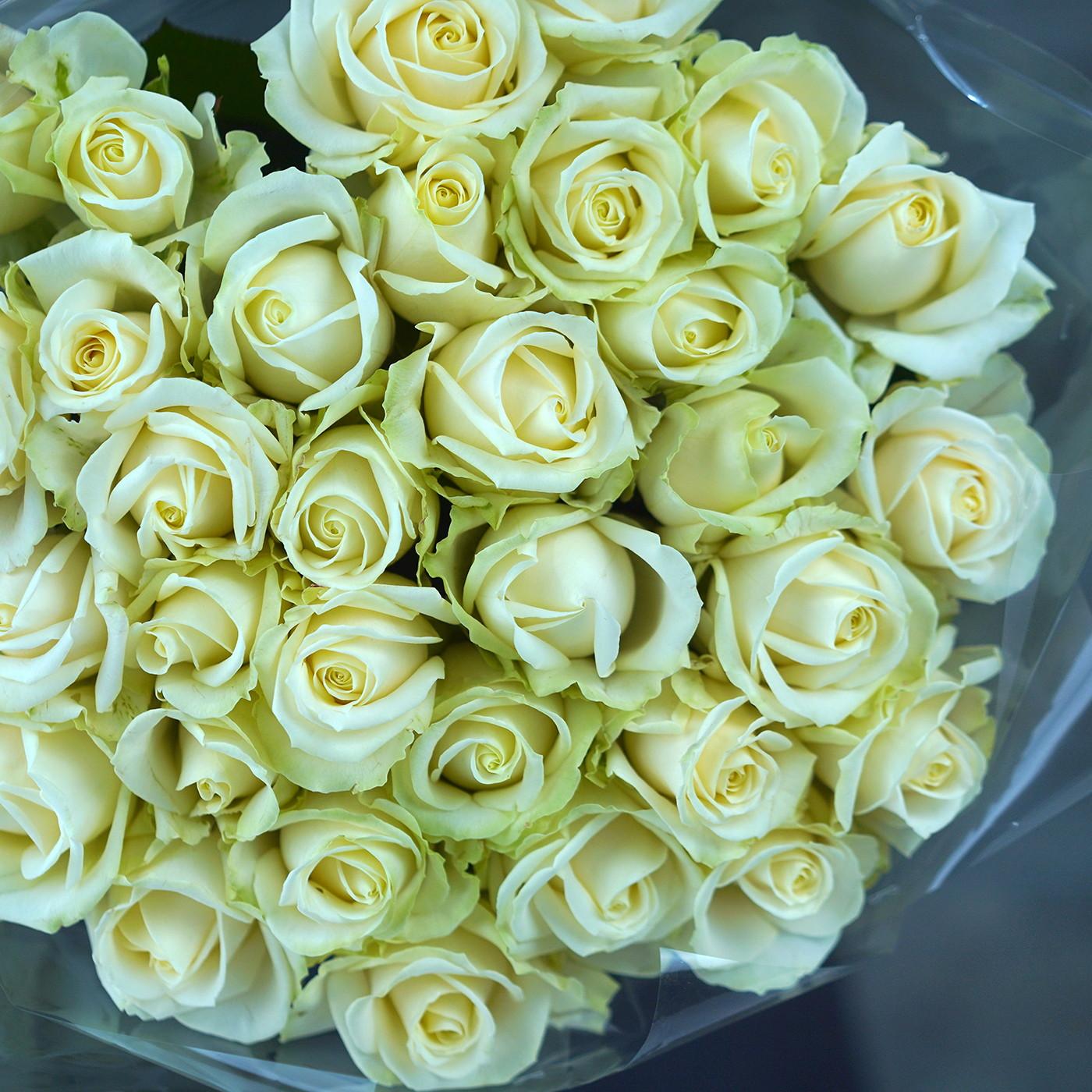 Букет из 31 розы кремового оттенка «Белоснежка»