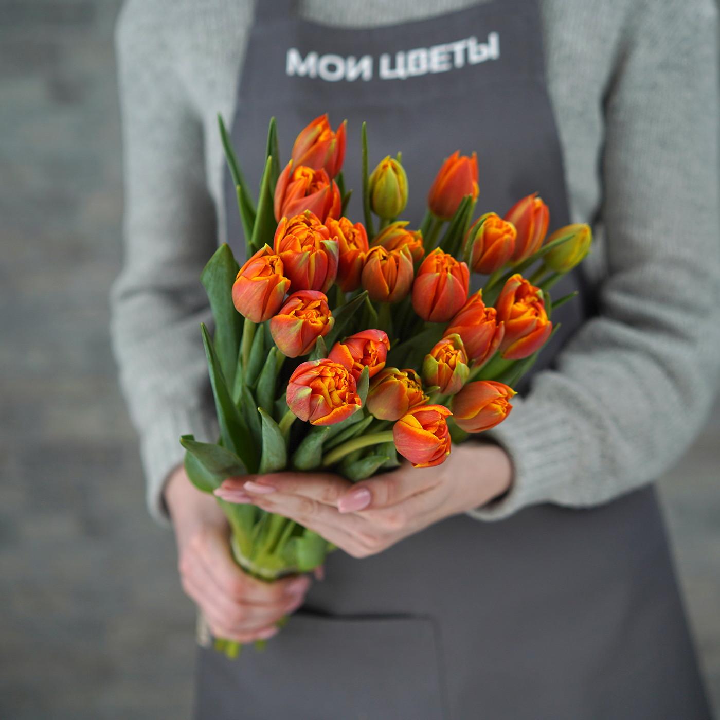 Тюльпан пионовидный в ассортименте