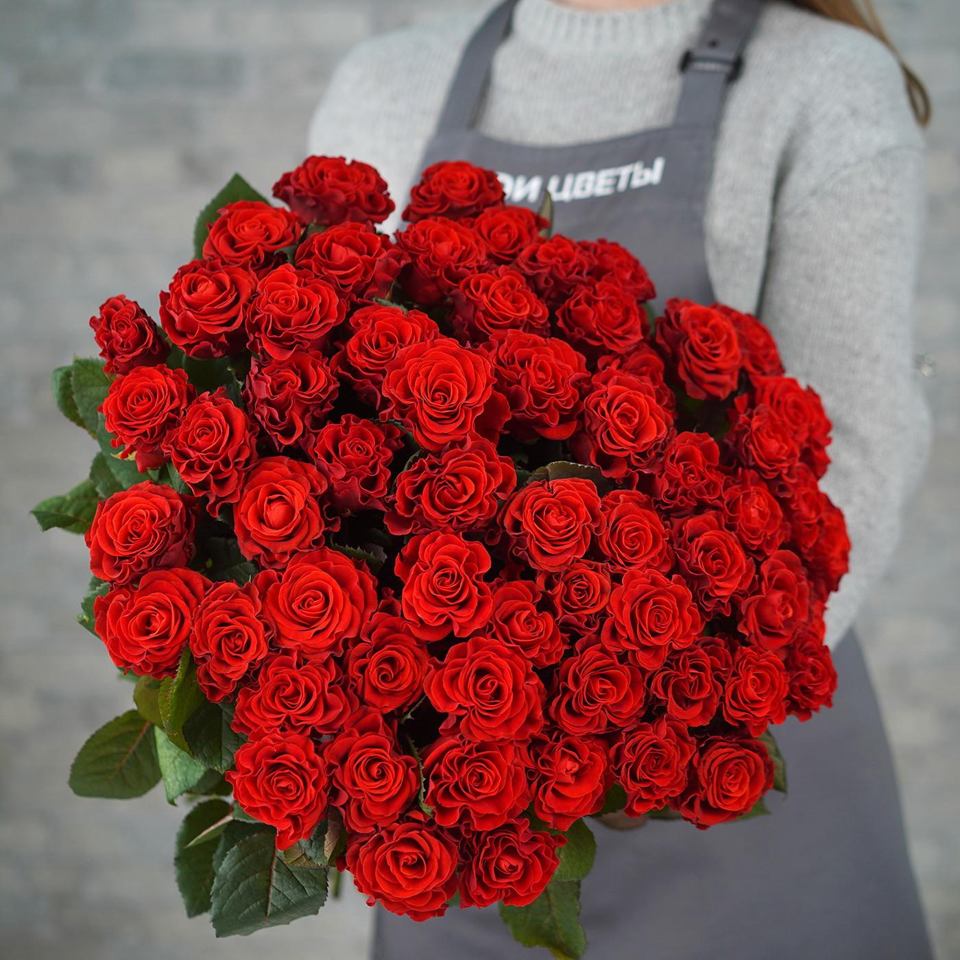 Роза «Эль Торо», Россия