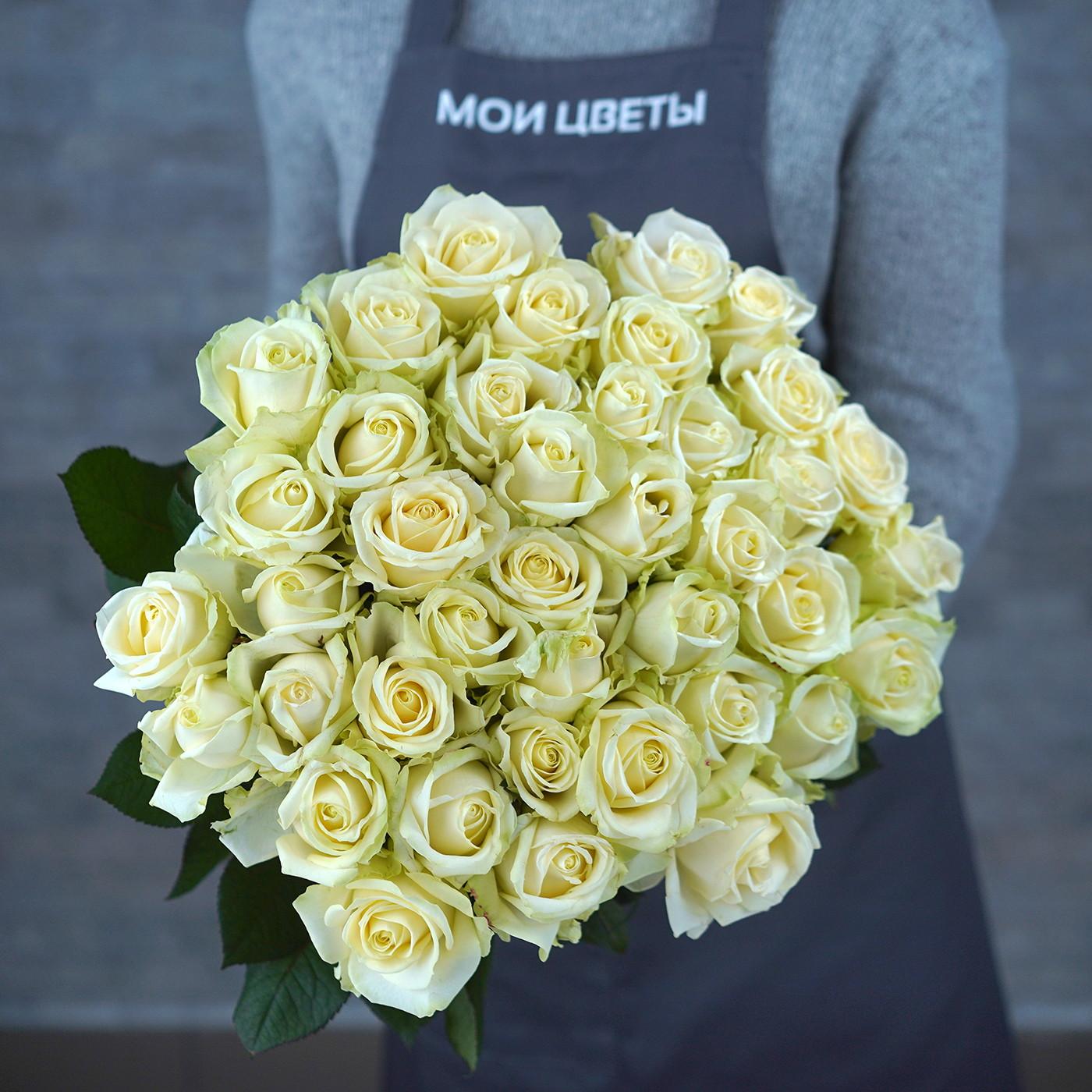 Роза «Аваланш», Россия