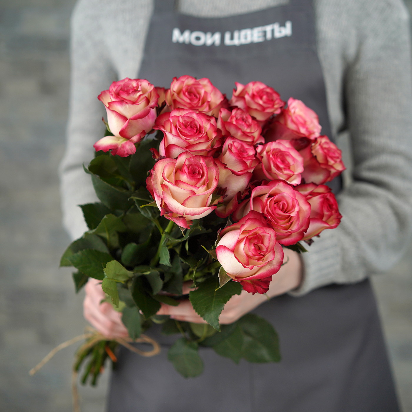 Роза «Палома», Эквадор