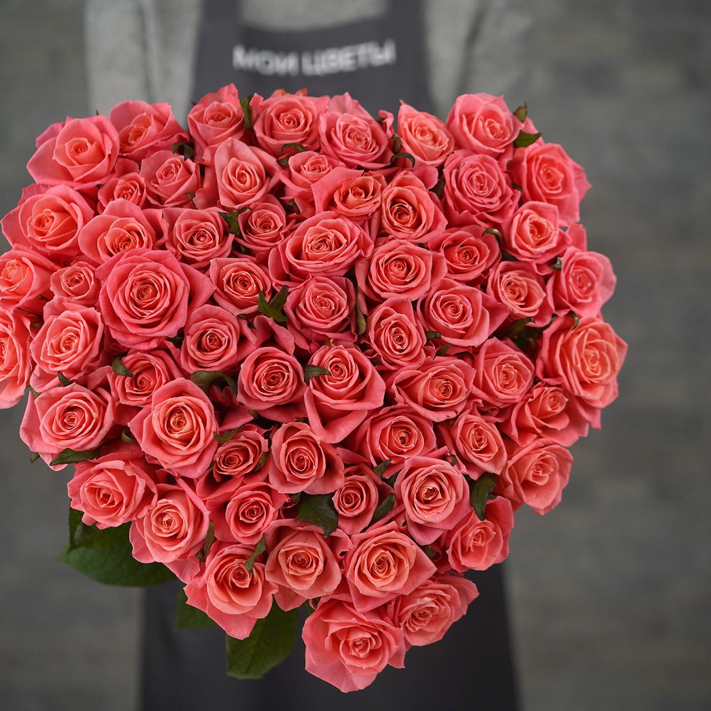 Роза «Карина», Россия