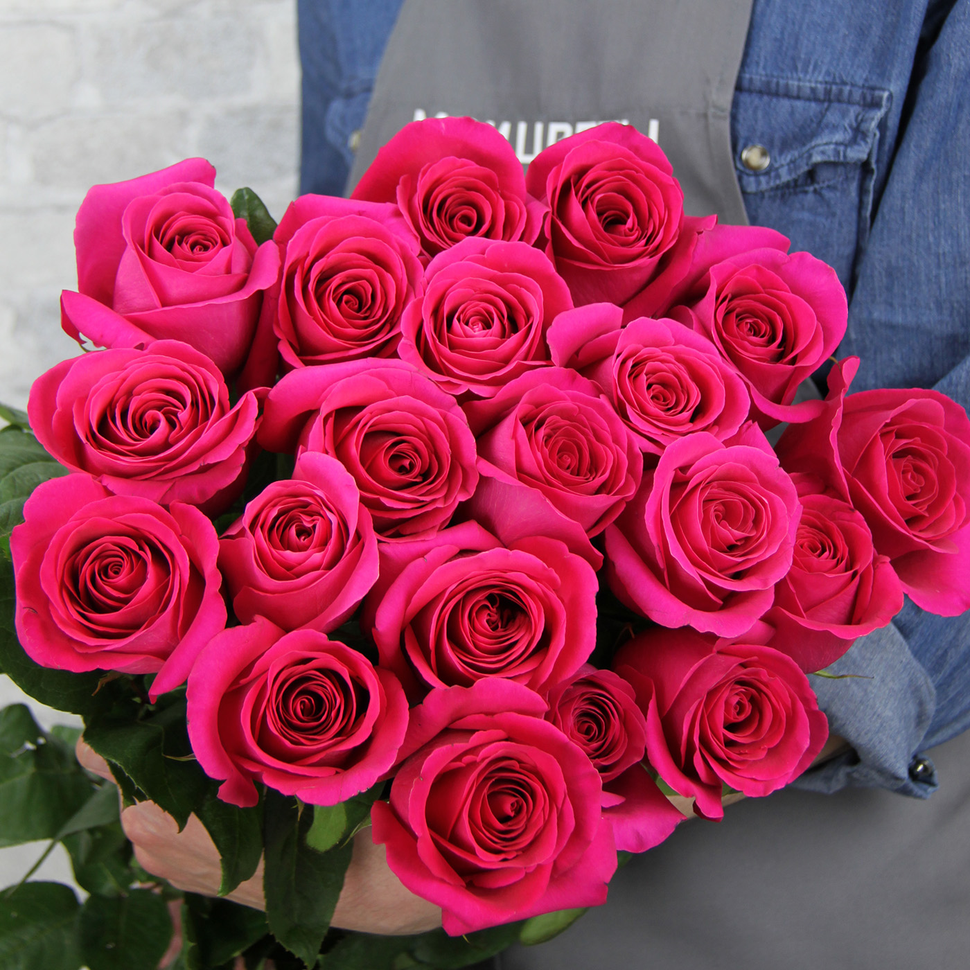 Роза «Пинк Флойд», Эквадор