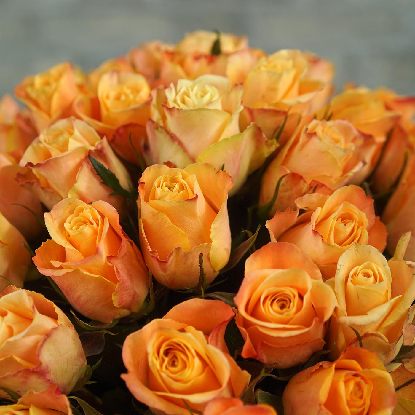 Букет из 101 янтарной розы «Рассвет»