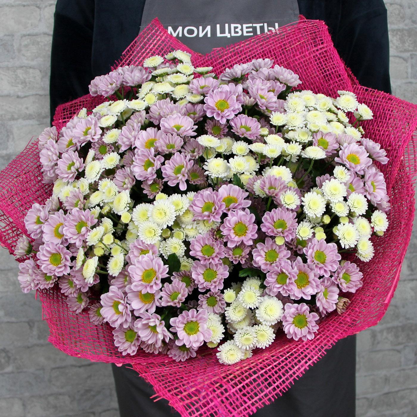 Букет с хризантемой «Ягода в сливках»