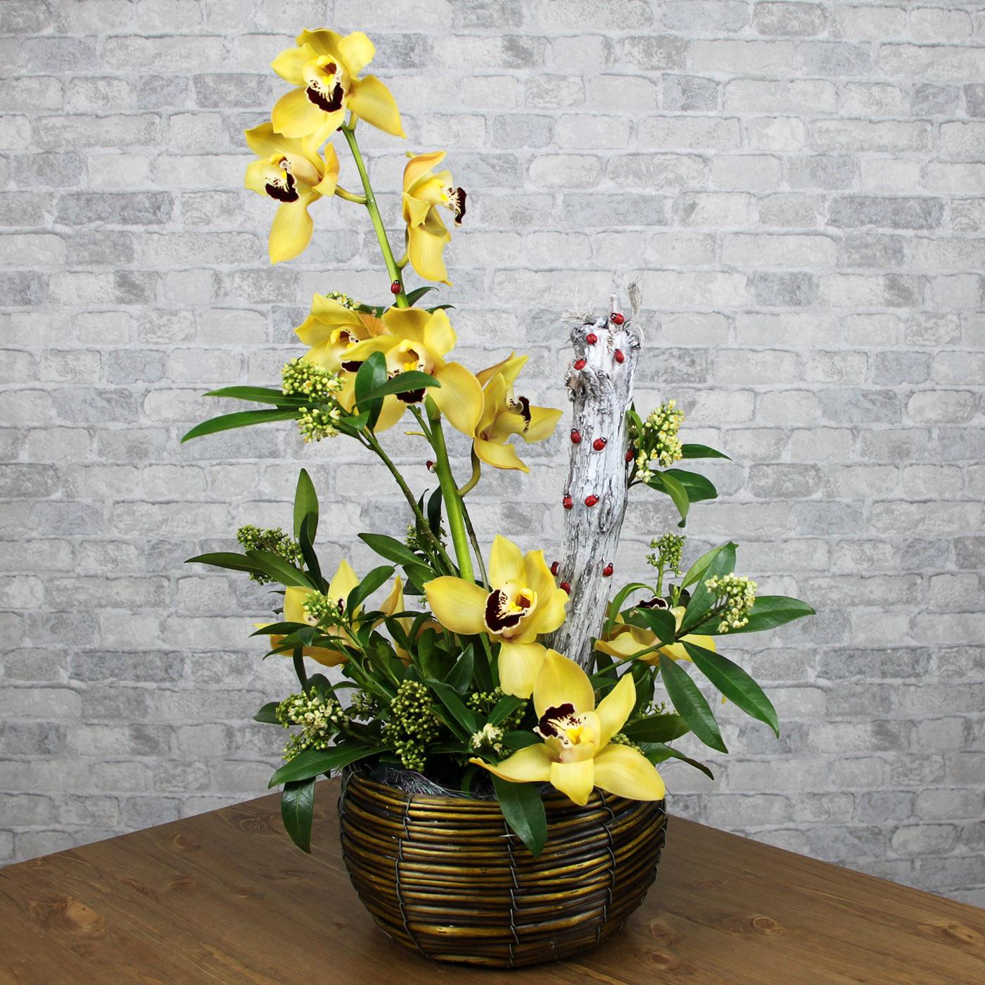 Композиция с орхидеей «Божья коровка желтая»