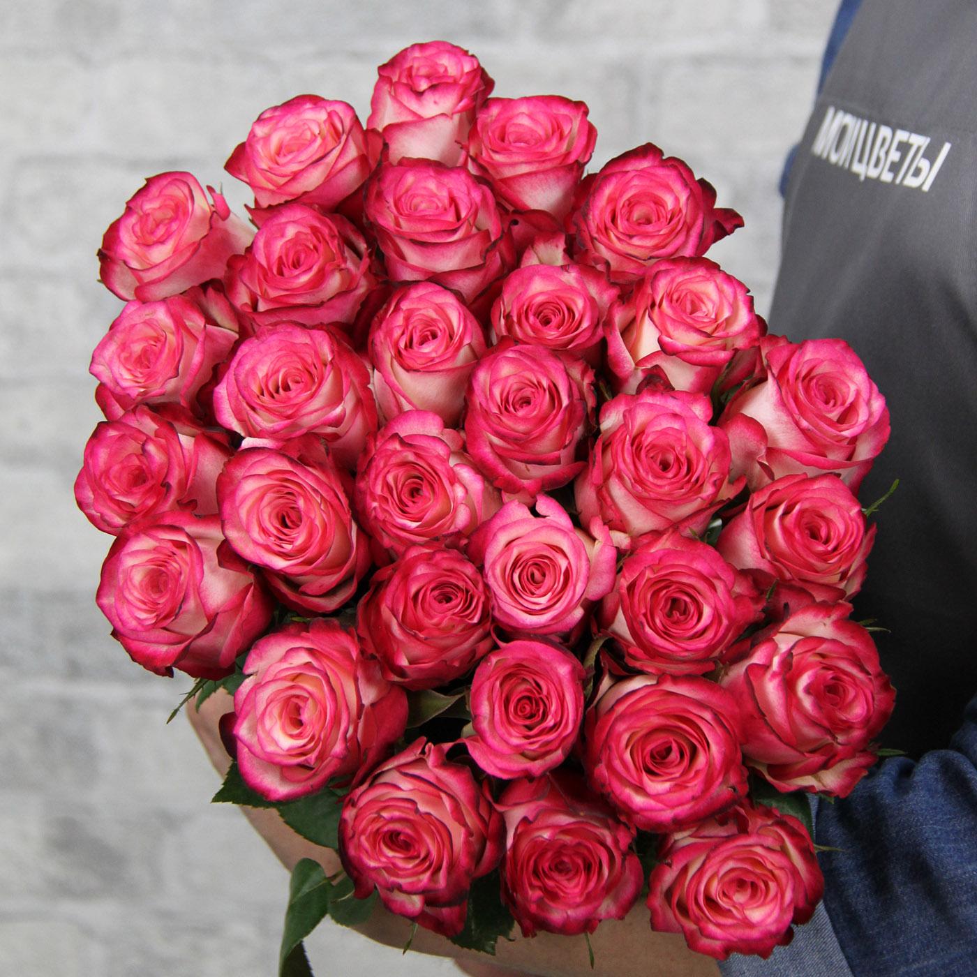 Роза «Карусель», Кения