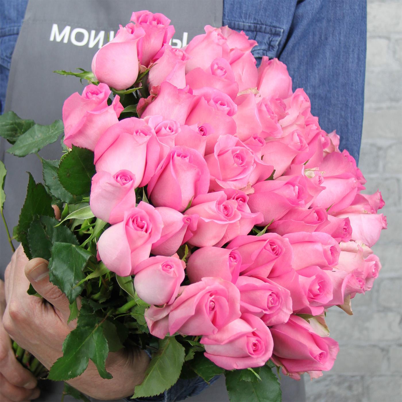 Роза «Ревайвл», Кения