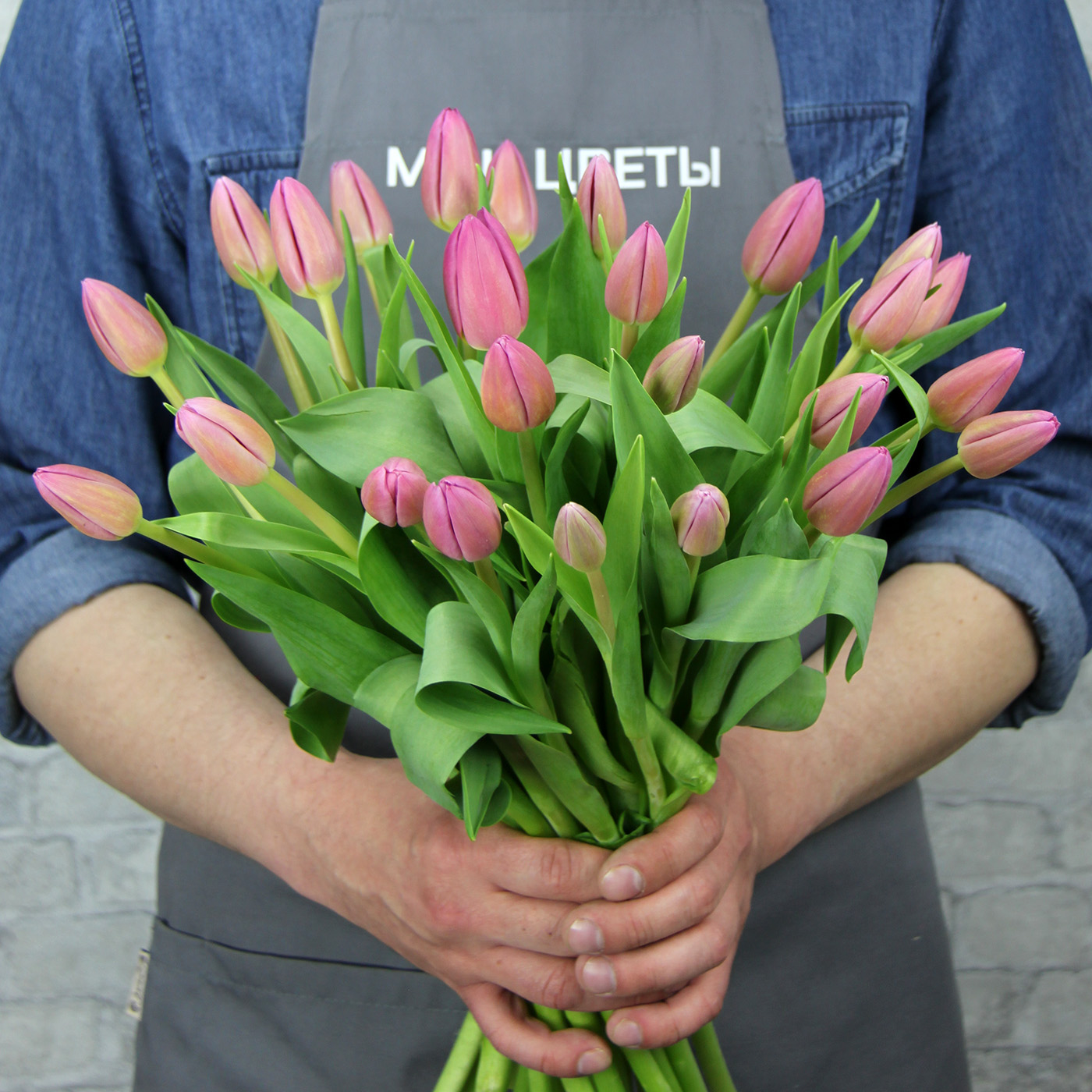 Тюльпан темно-розовый «Пинк Марлен», Голландия